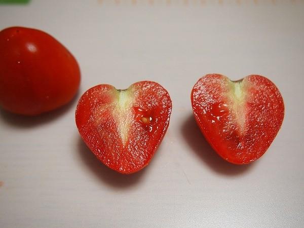 完熟させたミニトマト