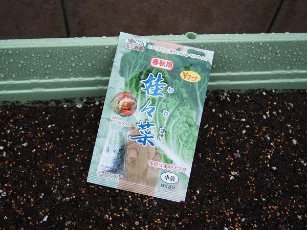 ミニ白菜の種