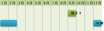 コールラビの栽培カレンダー