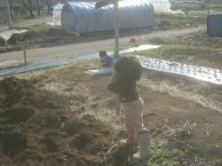 畑を耕す娘