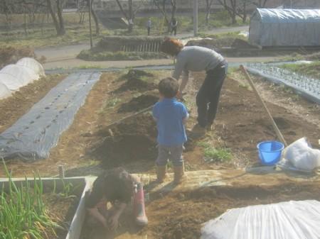 家族と家庭菜園