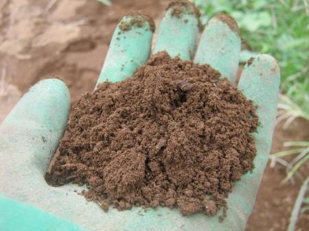通気性と保水性の良い土