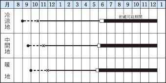 タマネギの栽培適期表