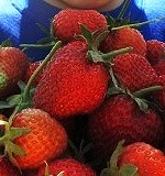 イチゴの育て方まとめ
