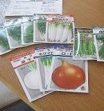 種や苗の入手方法