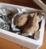 サツマイモの貯蔵方法