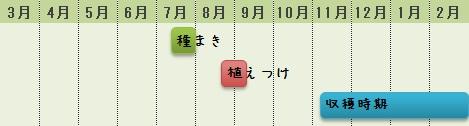 芽キャベツの栽培時期