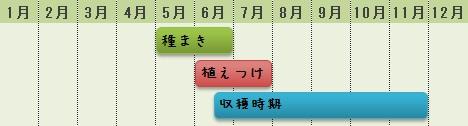 ツルムラサキの栽培時期