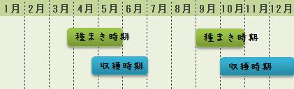 ラディッシュの栽培カレンダー
