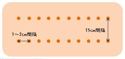 コリアンダー(パクチー)の種まきの間隔