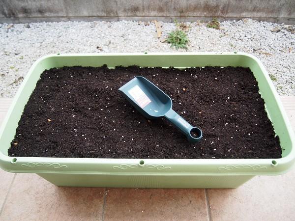 培養土を入れる