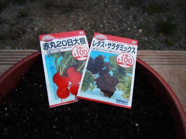ラディッシュとレタスサラダミックスの種