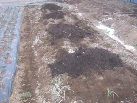 堆肥を入れたところ
