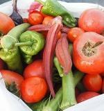 野菜を自分で育てよう
