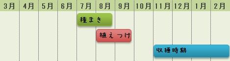 ブロッコリーの栽培時期
