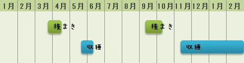 シュンギクの栽培時期